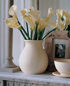 Cut calla lilies, classic white