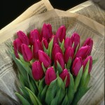 Surprise her with a new twist and buy a bouquet of tulips!