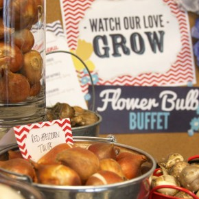 Planning Bulbs into Your Next Event