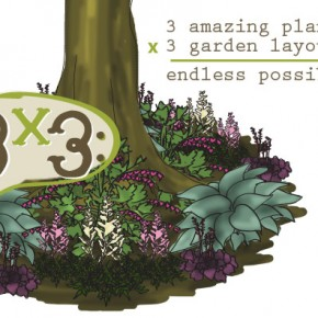 The 3x3 Garden Series (and no, I'm not talking dimensions...)