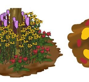 3x3 Garden #4: The Vibrant Sun Perennial Trio