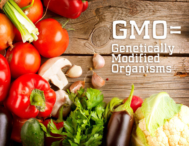 gmo-whatisit