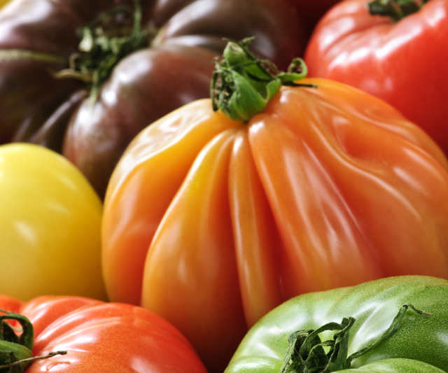 old-german-tomato
