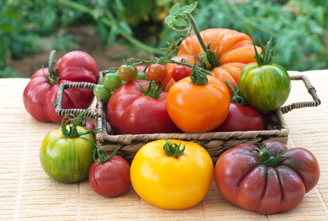 shutterstock_89571295-multicolor-tomatos-in-basket
