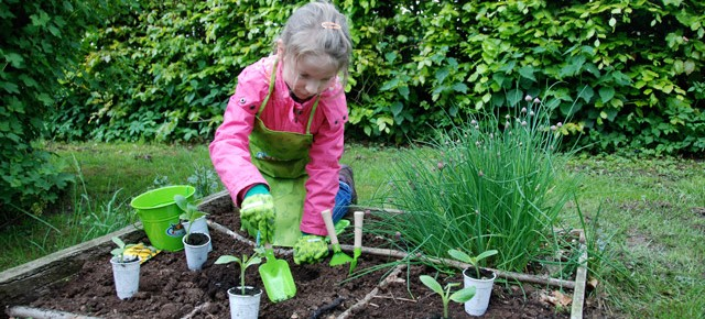 Gardening with Little Feet