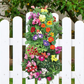 Mother's Day Garden Gift Ideas (That aren't hanging baskets)