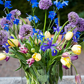 Iris, Tulips and Allium Arrangement