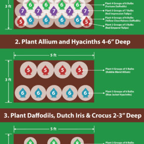 Planting Guide