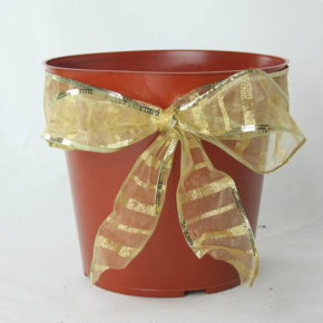 Pot With a Bow on It