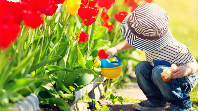 Child With Tulips
