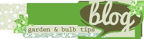 Bulb Blog Logo