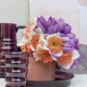 Hungarian Rhapsody Daffodils & Violet Beauty Single Late Tulips